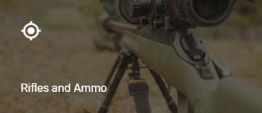 Listing Category - Rifles & Ammo
