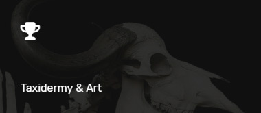 Listing Category - Taxidermy & Art